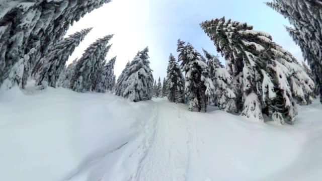 Man walking through beautiful winter forest, VR360, 360VR, 360 Video, 360 degree, VR, Little planet effect video