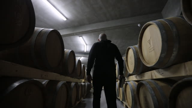 Man walking wine cellar full of wooden casks