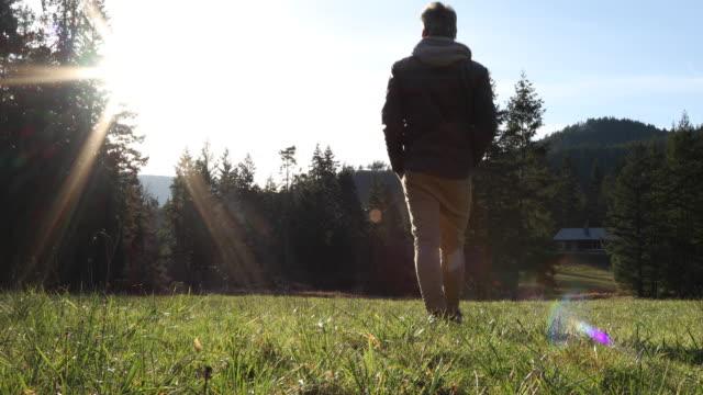 man walks across green field toward forest, home - solitario video stock e b–roll