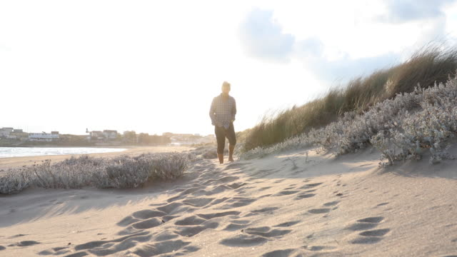 Man walks between beach grasses at sunrise He looks off to distant scene plaid stock videos & royalty-free footage