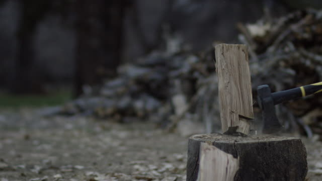 A Man Wearing Protective Gloves Chops a Wooden Log in Half for Firewood with an Axe Surrounded by Trees Outside at Dusk on a Cloudy Day A Man Wearing Protective Gloves Chops a Wooden Log in Half for Firewood with an Axe Surrounded by Trees Outside at Dusk on a Cloudy Day firewood stock videos & royalty-free footage