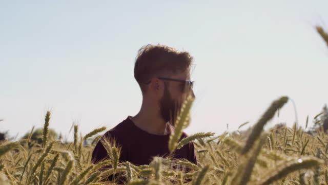 Mann mit Bart zu suchen um schöne Weizenfeld mit blauen Himmel und epische Sonnenlicht - Schuss auf rot – Video