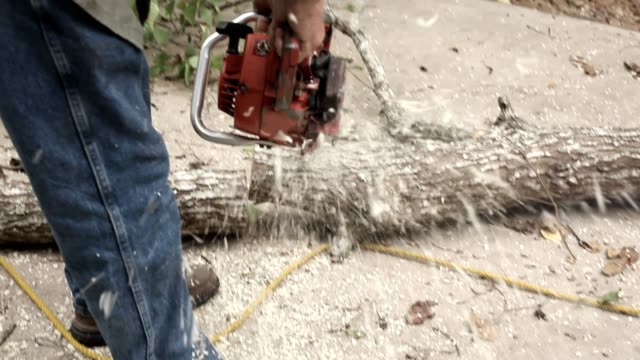 Man with chainsaw cutting up tree trunk. video