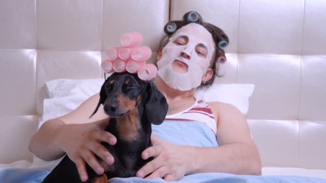 man with cosmetic mask on his face make massage of funny dachshund, softly stroking its neck, head and back. the both lay in bed, with curlers on hairs. indoors, spa-day concept. - viziarsi video stock e b–roll