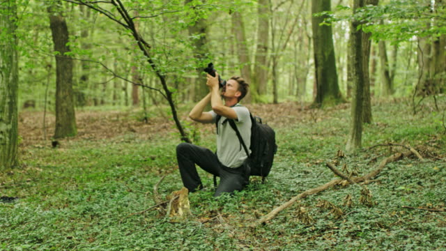MS Man with digital camera photographing trees in lush green forest