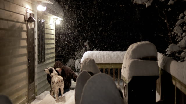 Man with Dogs Goes Into House in From Snow