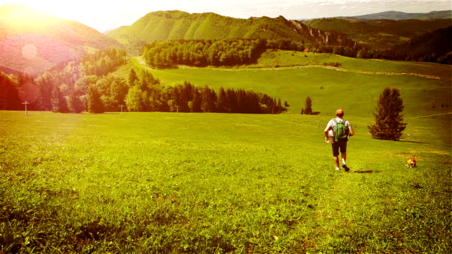 A man with his beagle runs down the green hill on a sunny day video