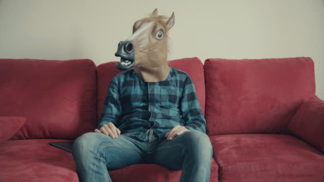 Man with horse head sitting on a red sofa video