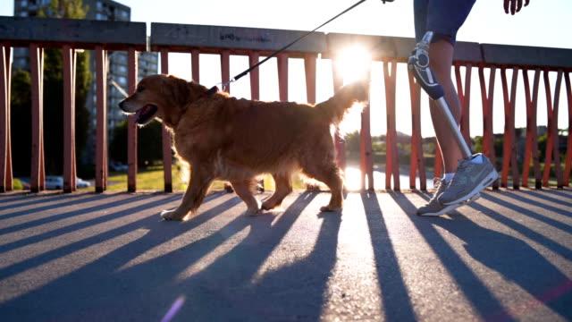 犬を散歩の義足の男 - 支えられた点の映像素材/bロール