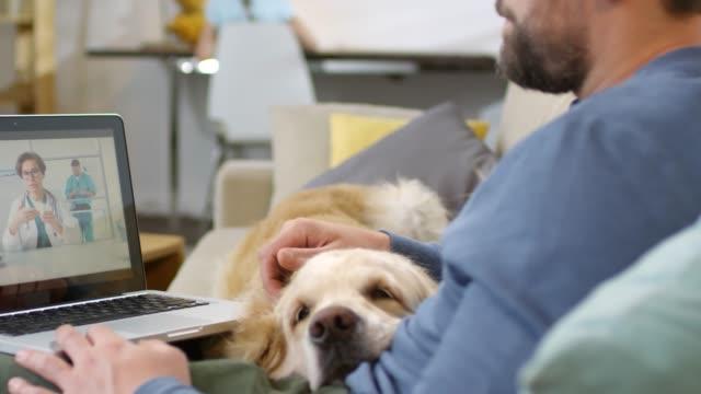 man med sick dog consulting med online vet - veterinär bildbanksvideor och videomaterial från bakom kulisserna