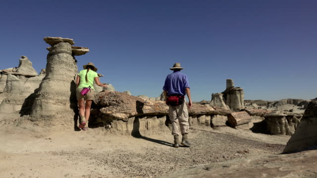 Man Woman explore eroded Cretaceous sandstone hoodoos petrified wood log Bisti De-Na-Zin Wilderness New Mexico video
