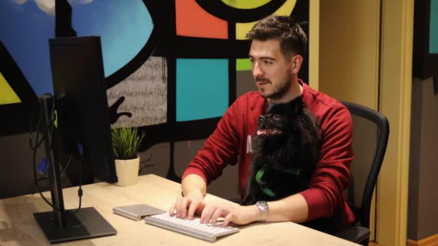 uomo che lavora con il suo cane pomeraniano nero in un ufficio pet friendly - curiosità video stock e b–roll