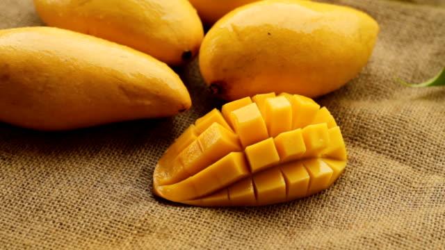 mango season - сочный стоковые видео и кадры b-roll
