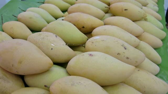 Mangoes video