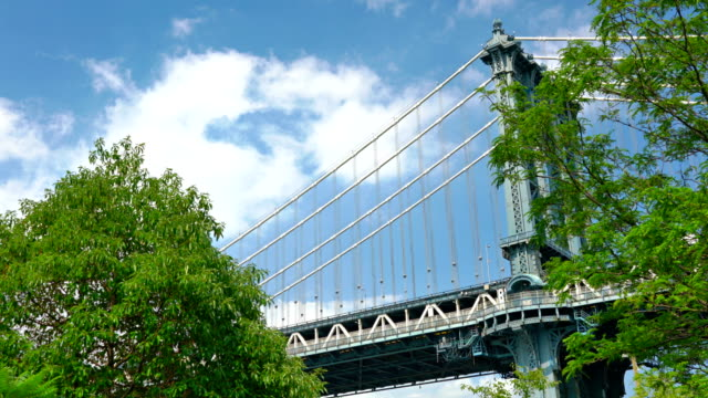Manhattan bridge and tree, nature Cityscape manhattan bridge stock videos & royalty-free footage