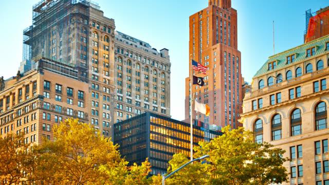 Manhattan New York skyline. Tree. Typical Building. Flag. American culture.