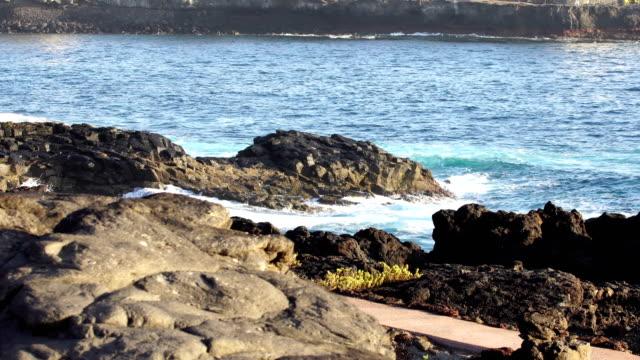 vídeos y material grabado en eventos de stock de playa del hombre - gran canaria - basalto