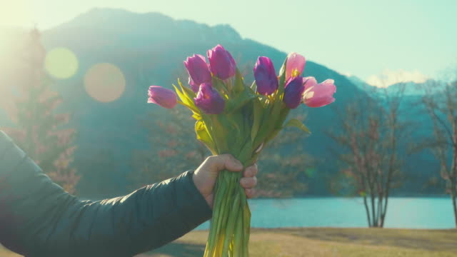 A man's hand gives a bouquet of colourful tulips to a woman on a Valentine's day.