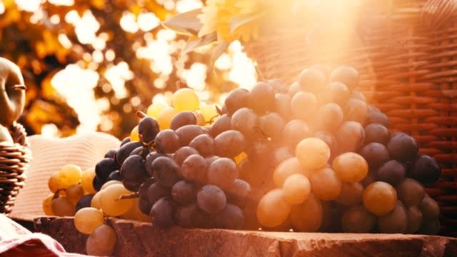 vídeos de stock e filmes b-roll de man's hand reaching for grapes - grapes