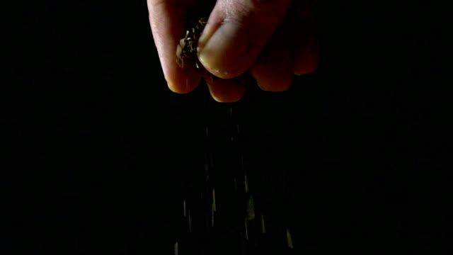 Man's hand sprinkling oregano