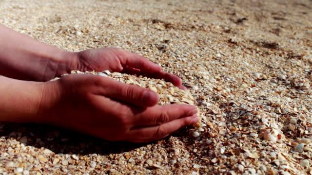 vídeos y material grabado en eventos de stock de un hombre toma mano seashells, la arena en la playa - letra s