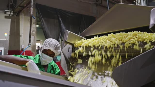 manuell arbetare kontrol lera salta chips kvalitet - livsmedelstillverkningsfabrik bildbanksvideor och videomaterial från bakom kulisserna