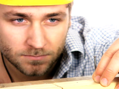 PAL: Manual worker video