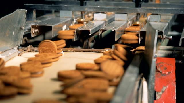 üretim fabrikası'nda çift kişilik tanımlama bilgileri. - gıda ve i̇çecek sanayi stok videoları ve detay görüntü çekimi