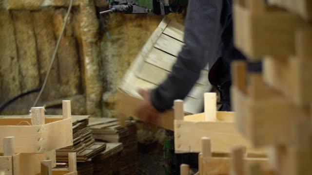 tillverkning av trälådor - djurarm bildbanksvideor och videomaterial från bakom kulisserna