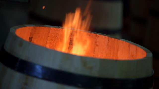 vídeos de stock e filmes b-roll de barris de vinho de fabrico-bordéus vinha - barrica