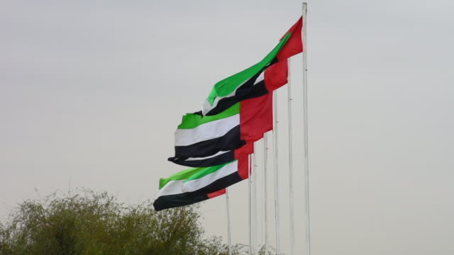 many bright united arab emirates flags flying in a row and waving in the sunshine with a in preparation for national and flag day. - uae flag filmów i materiałów b-roll