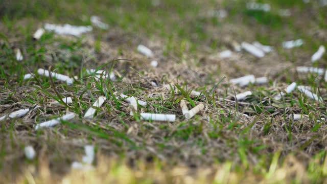 vídeos de stock, filmes e b-roll de muitas pontas de cigarro na grama. poluição ambiental. - estônia