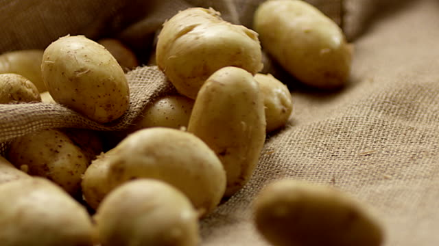many fresh potatoes falling and revolving in slow motion. - patate video stock e b–roll