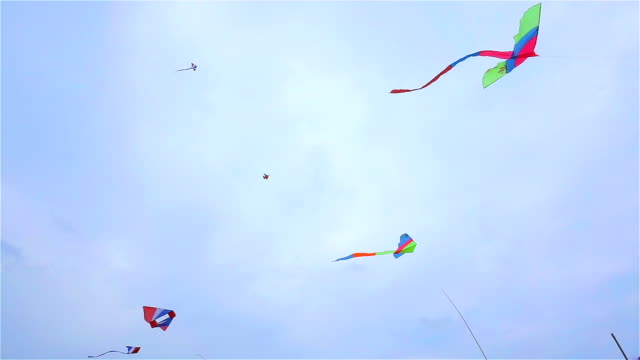 Many kite on the sky video