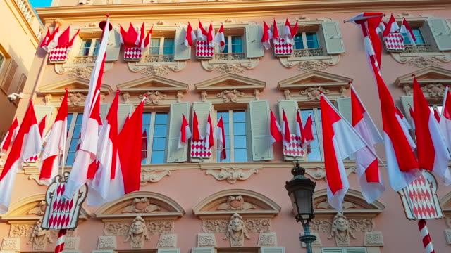 Many National Flags of Monaco video