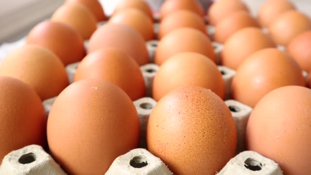 Many of organic chicken eggs in box Close up of lot chicken eggs in a package. Organic food concept. Selective focus large group of objects stock videos & royalty-free footage