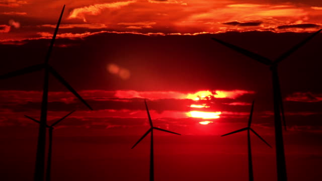 Many wind mills against red sunset - HD video
