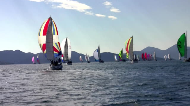 many yachts with spinnaker on a sailing regatta many yachts with spinnaker on a sailing regatta in the Mediterranean Sea mast sailing stock videos & royalty-free footage