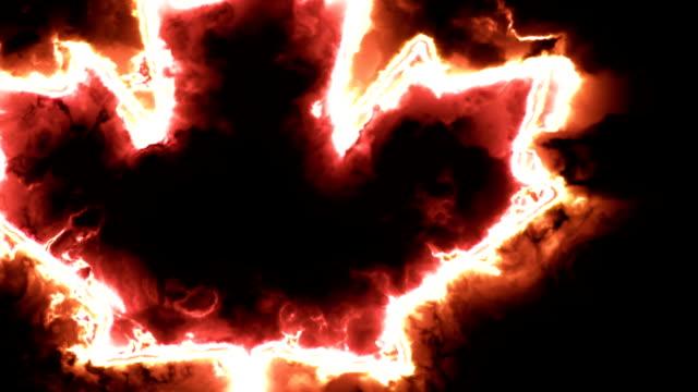 ahorn blatt symbol von kanada in einer bunten aura energie - ahorn stock-videos und b-roll-filmmaterial