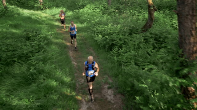 AERIAL Marathon participants running across forest clearing video