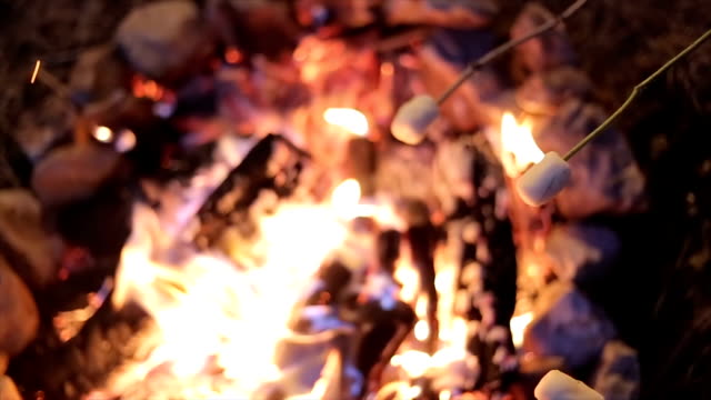 March mallow on the campfire,close up March mallow on the campfire,close up marshmallow stock videos & royalty-free footage