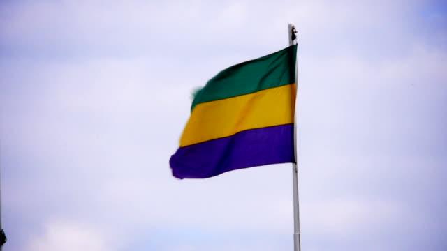 Mardi Gras bandera - vídeo