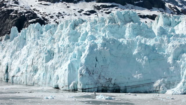 Margerie Glacier Calving video
