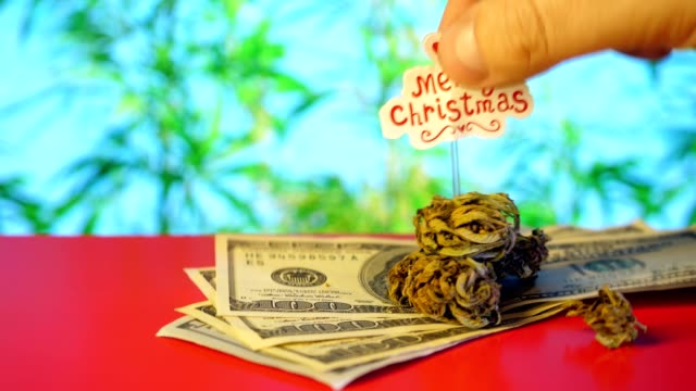 Marijuana 100 Dollars, money, Merry Christmas lettering. Red background. Marijuana 100 Dollars, money, Merry Christmas lettering. Red background. cbd oil stock videos & royalty-free footage