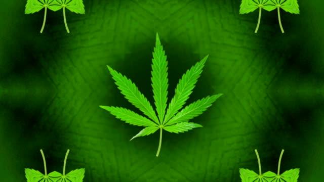 Marijuana / Cannabis Loop video