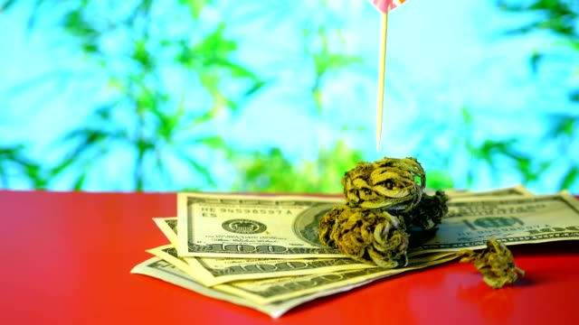 Marijuana Dollar, money, inscription Valentine's day. Red background Marijuana Dollar, money, inscription Valentine's day. Red background cbd oil stock videos & royalty-free footage