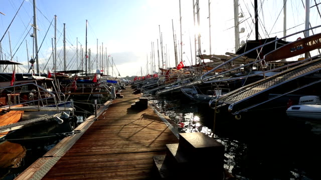 marina video