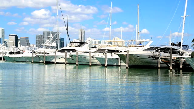 marina with yachts in miami, fl - yat limanı stok videoları ve detay görüntü çekimi