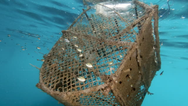 Marine debris Ghost Net Pollution from commercial fishing industry trawler lost at sea