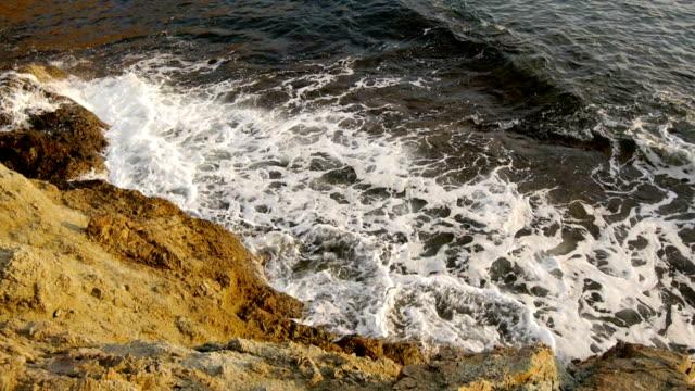Marine, rocky seashore video